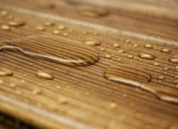 Использование сырой древесины в строительстве