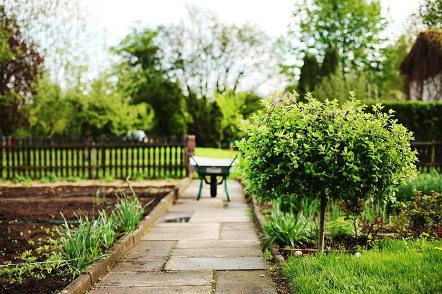 Как сделать дорожку на садовом участке своими руками
