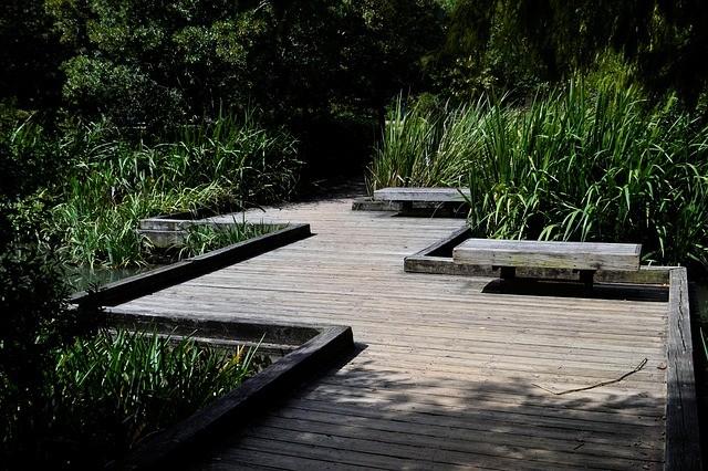 Дорожка на садовом участке