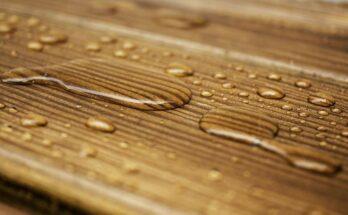 Обработка сырой древесины